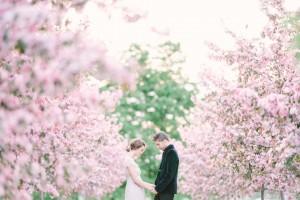 Сватбите в цифри